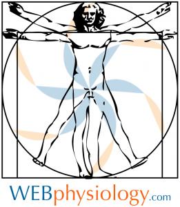 WEBphysiology Vitruvian Man
