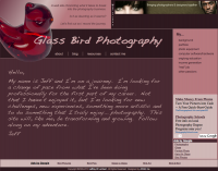 Glass Bird Photography